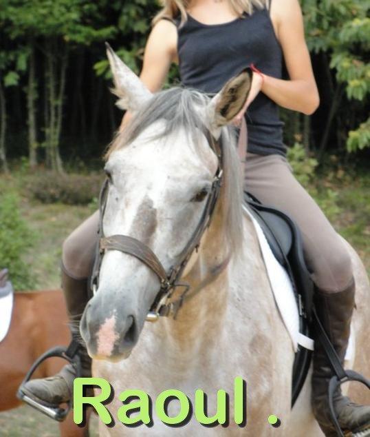 Raoul .