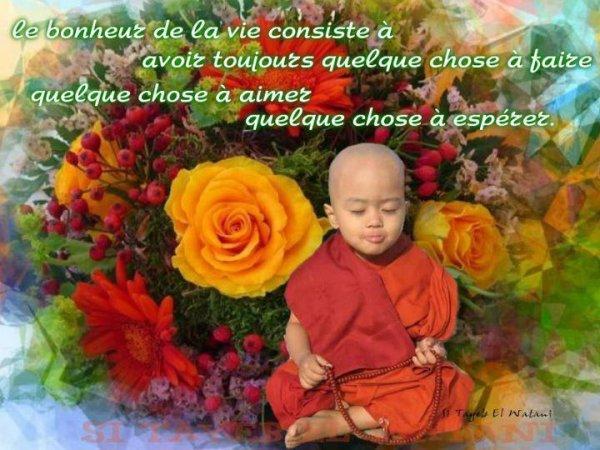 sagesse spirituel