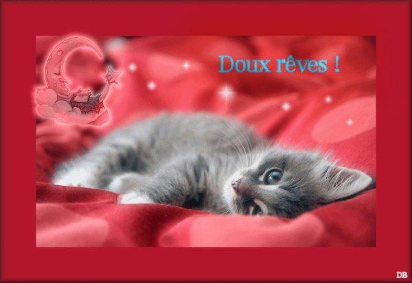 bonne nuit à tous et à toutes .......