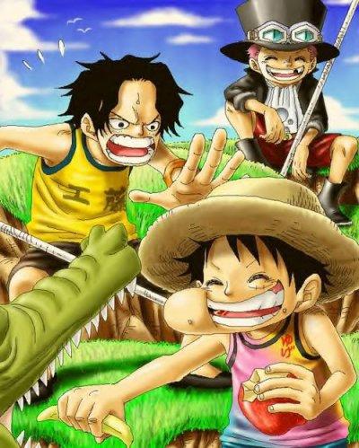 One Piece 500