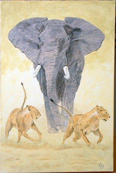 Elephant et lions - 149
