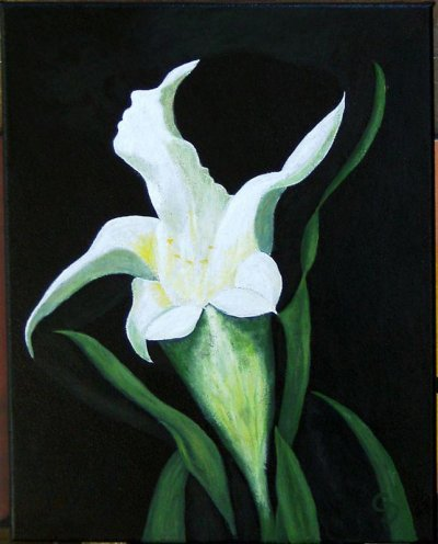 Fleur et baiser - 125