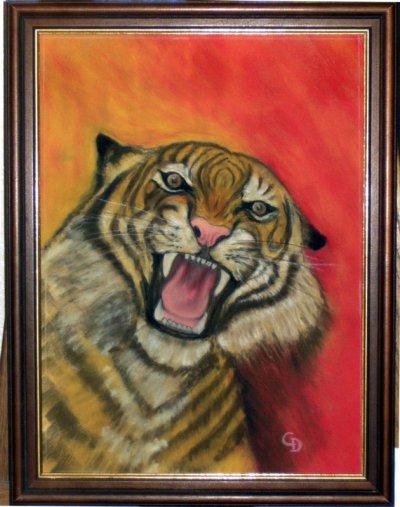 Tigre - 85