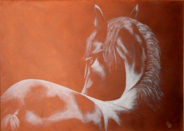 227 - Cheval blanc
