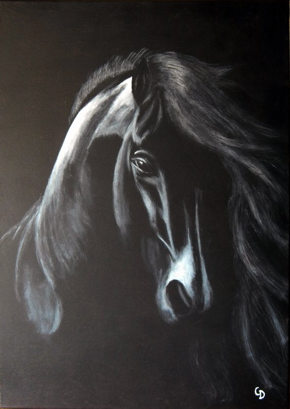 235 - Cheval noir