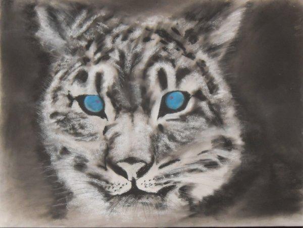 238 - Tigre blanc