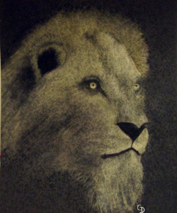 239 - Lion