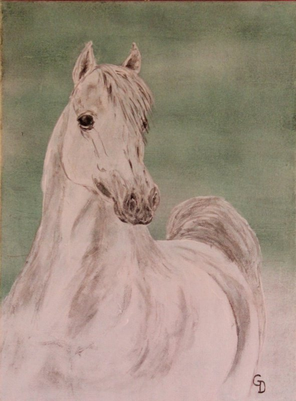 253 - Cheval blanc