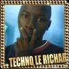 technolerichar