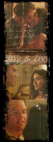 new fiction tiva