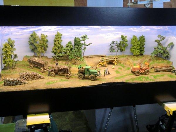 18 ème Bourse et exposition de miniatures agricole à Chartres (28)