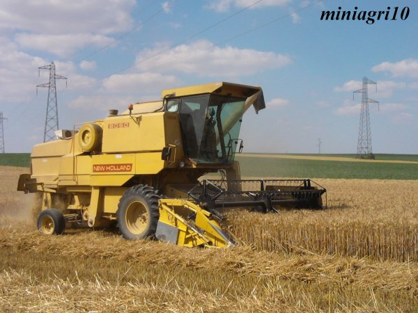 Moisson du blé 2011 avec New Holland 8050