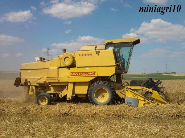 Moisson du blé 2011 avec New Holland 8050