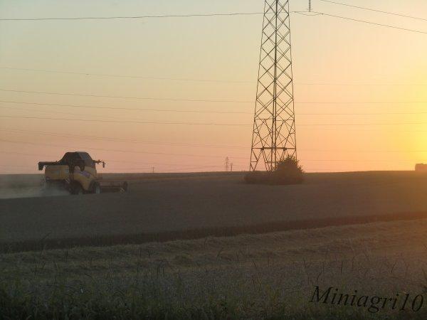Moisson 2012 du colza et du blé avec une New Holland CX8050