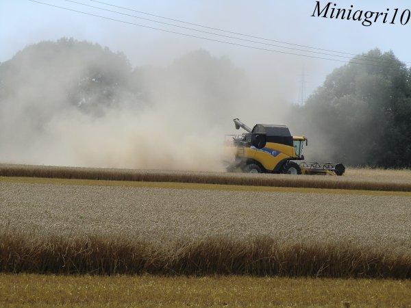 Moisson 2012 du blé avec une New Holland CR9060