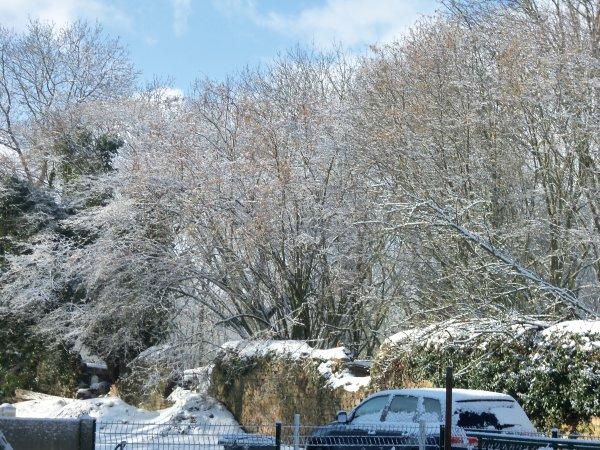 la neige dans le calvados!!!!