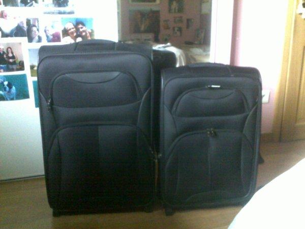 Oui ! Même mes valises auront leur article !
