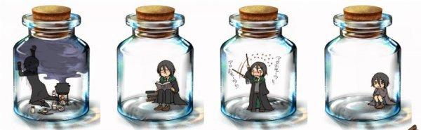 Un Severus en bocal