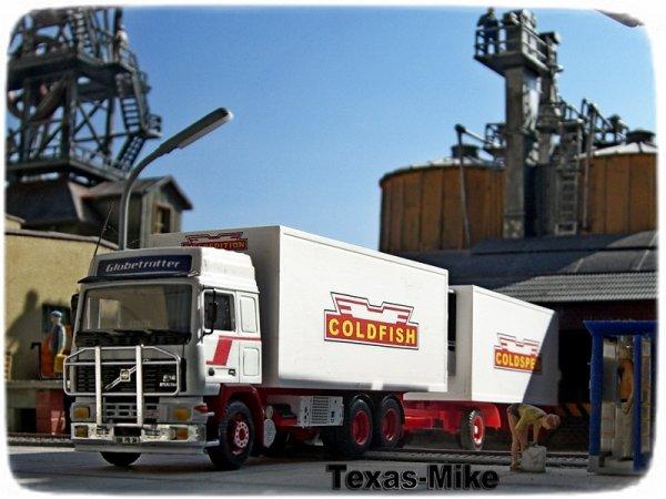 COLDFISH  ColdSped Transport VOLVO F12 400 Globetrotter