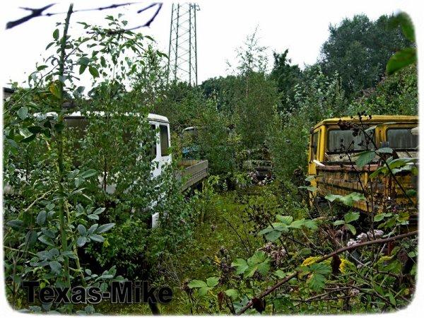 abgestellt Alte Verlassene Fahrzeug-LKW