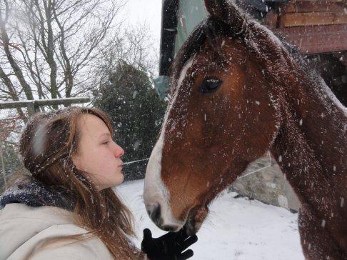 Un cheval c'est un coeur a conquérir ,pas de la chair a dévorer!