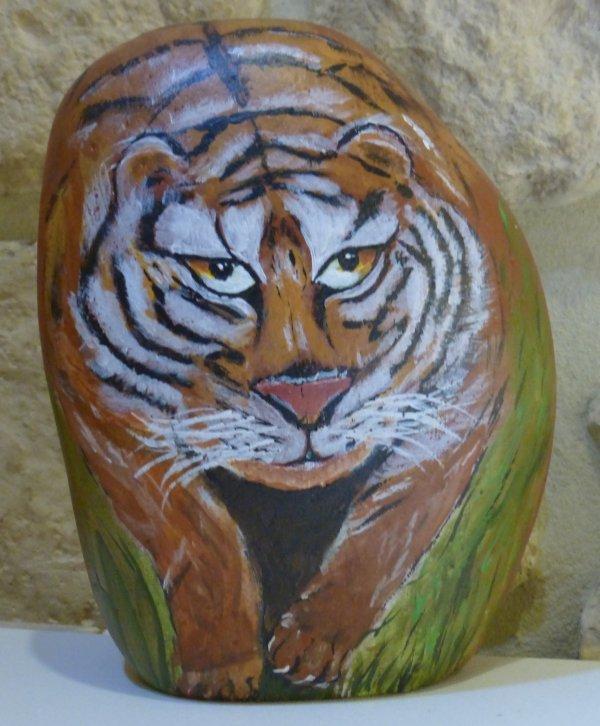Tigre du Bengale sur caillou.