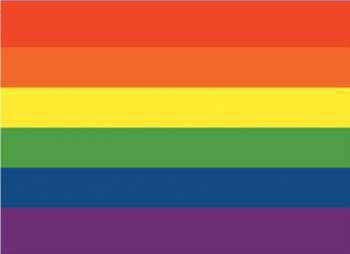 pour nous les hommes mecs gays voila donc le drapo des homosxsuelle voila