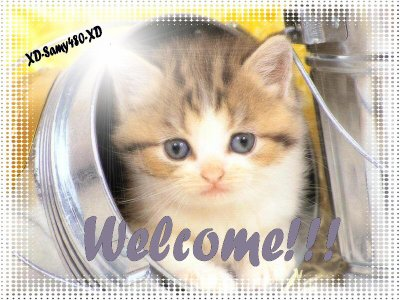 WelcOme à tOus!!!