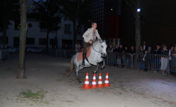 Festival de l'université Jean Monnet, 24 mai 2014