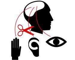 3èmes prise de conscience septembre 2012, conservatoire, théâtre, procés évaluation neurologique, sport & mur septembre 2012