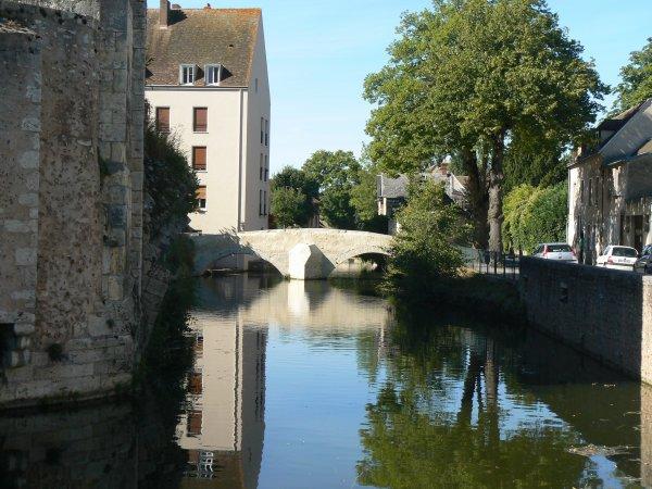 Évaluation neuropsychologique 2012, papa est chouettes, visite de Chartres