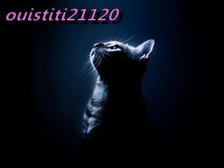 ouistiti21120  fête ses 58 ans demain, pense à lui offrir un cadeau.Aujourd'hui à 07:04
