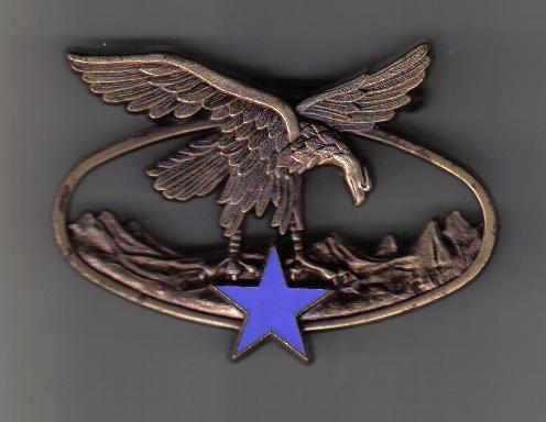 insigne de .....brevet  moniteur  guide militaire de haute montagne