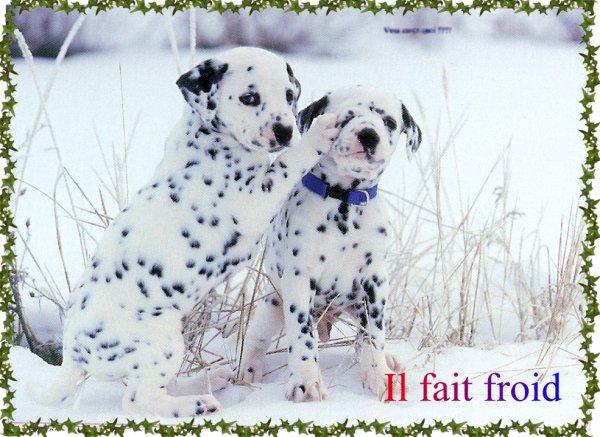 Bonjour Le Froid Est Bien Là Couvrez Vous Bien Si Vous