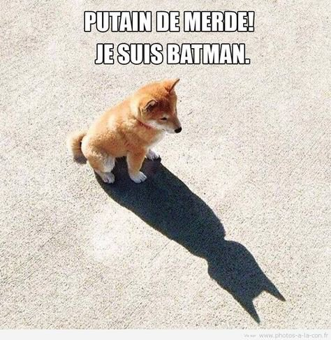 Quand on s aperçoit qu'on est Batman