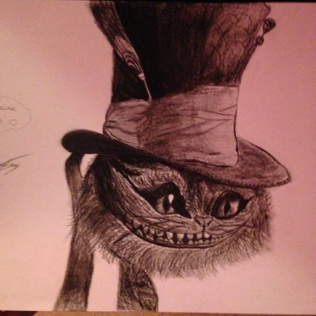 The Cheshire Cat ~