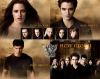 twilight-cullen-volturi