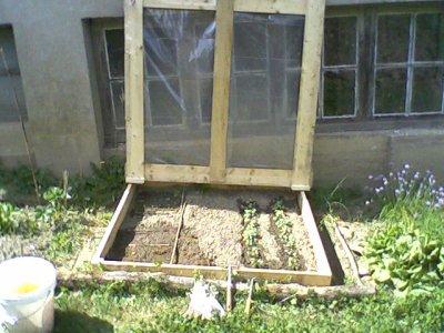 une mini plantation