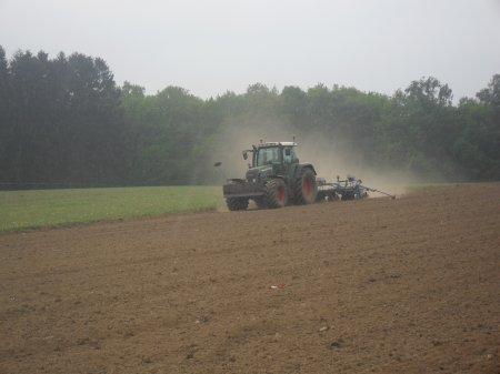plantation des maïs