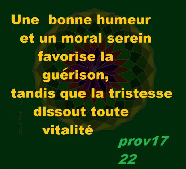 PROVERBE  17 22