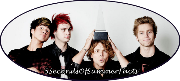 No. 1 - 5 Seconds of Summer Facts