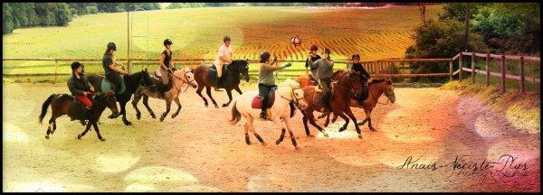 « Pour parler à un cheval il n'y a pas besoin de mot, c'est une étreinte charnelle qui alimente nos rêves. Tiens, regarde un cavalier sans son cheval .. Il lui manque la moitié de son sang. »