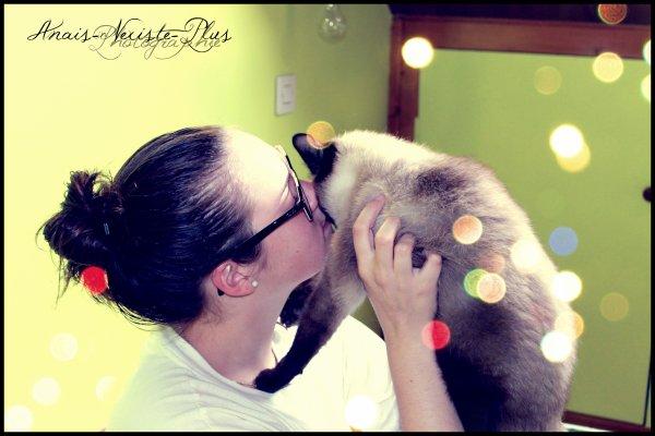 Le chat est d'une honnêteté absolue : les êtres humains cachent,  pour une raison ou une autre, leurs sentiments. Les chats non.