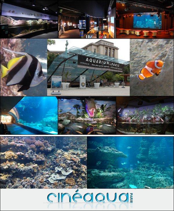 Cinéaqua (Aquarium de Paris)