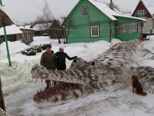 winter crocodile