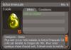Par Squall : Un nouveau dofus