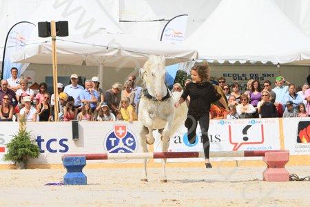 Mon poney... tu es le meilleur!