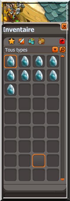 9 Dofus Turquoises en 140 DC ?!