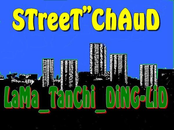 StreeT-ChauD (2011)