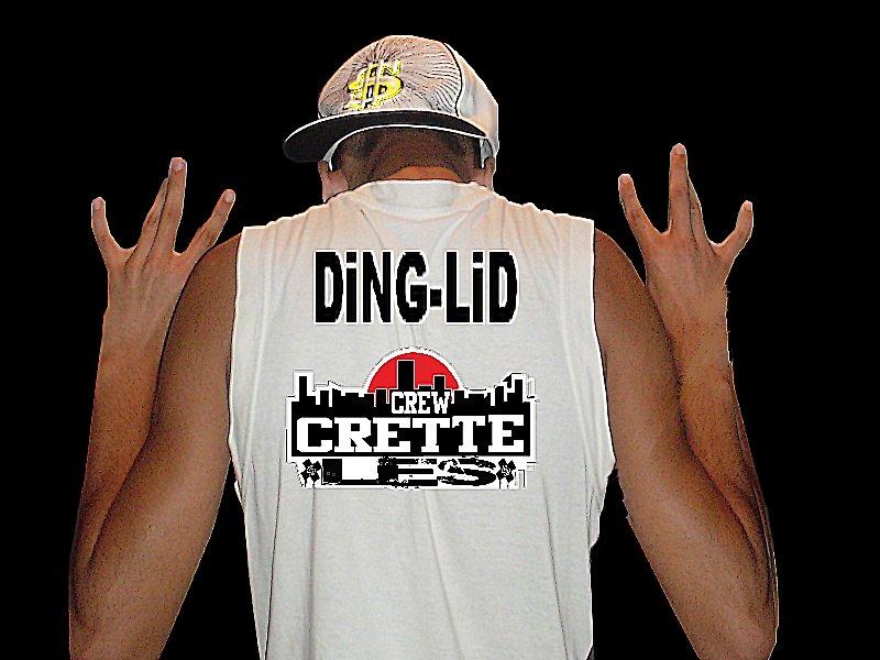 DiNG-LiD